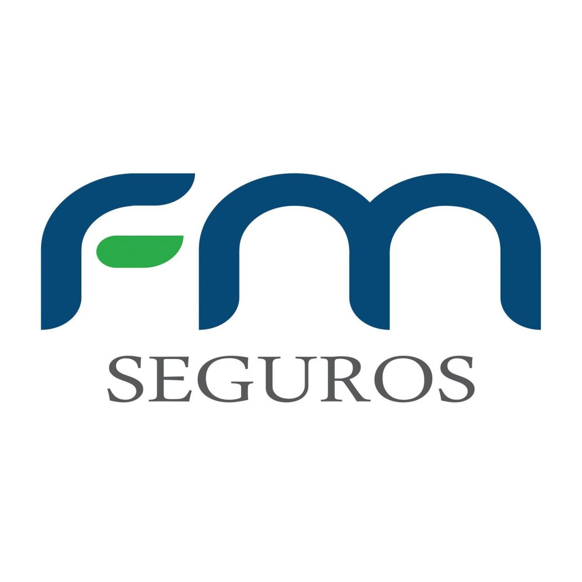 FM SEGUROS