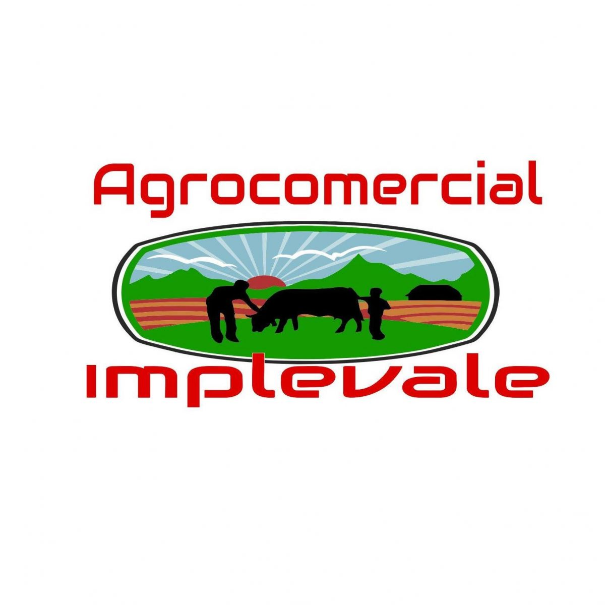 AGROCOMERCIAL IMPLEVALE